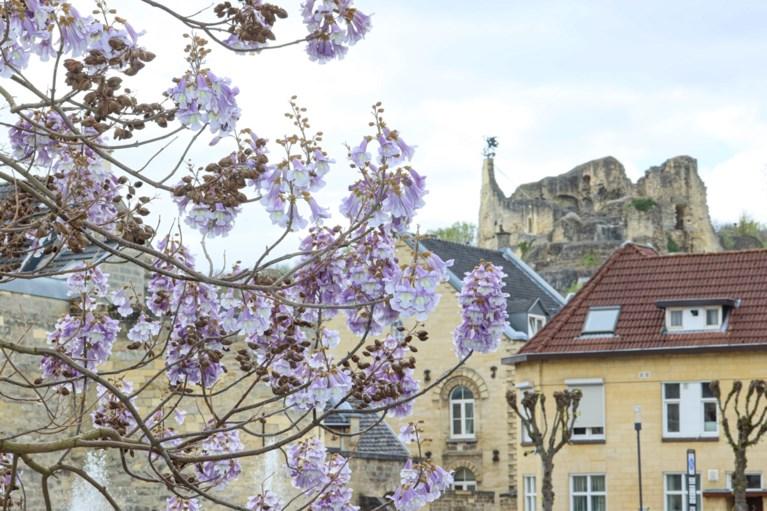 De 5 mooiste wandelroutes in Valkenburg aan de Geul
