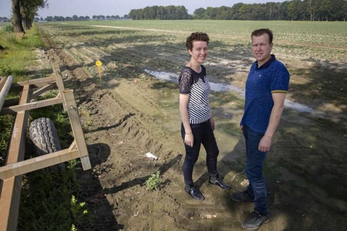 Plan voor groot crematorium aan de rand van het Weerterbos