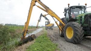 Raadslid Lokaal Peel en Maas hekelt Waterschap vanwege maaien tijdens broedseizoen