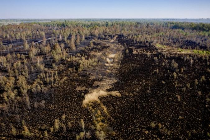 Het vuur was weg in de Deurnsche Peel, maar de brand bleef