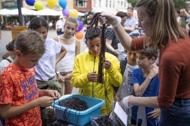 Schoolkinderen in Weert knopen langste dropveterslinger