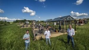 Pop-uprestaurant Veldkas in Sint Geertruid: 'corona-proof' genieten met verbluffend uitzicht