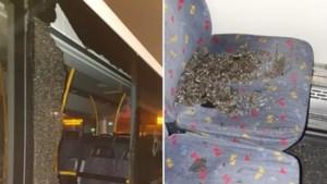 Vrouw die Eindhovense bussen beschoot, liep vaker rond met wapens