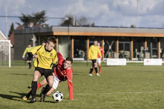 Voetbalclub Walburgia heeft een fraai sportpark, maar ook wat weinig spelers