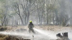 Onderzoek naar natuurbrand de Meinweg