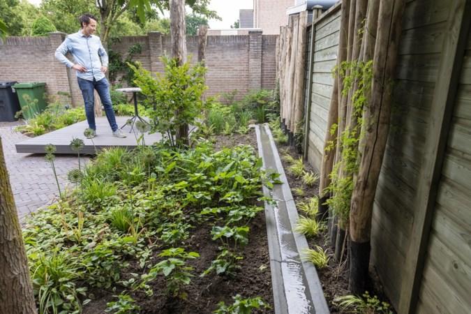 Maak je tuin klimaatproof: tips van een water- en droogtespecialist