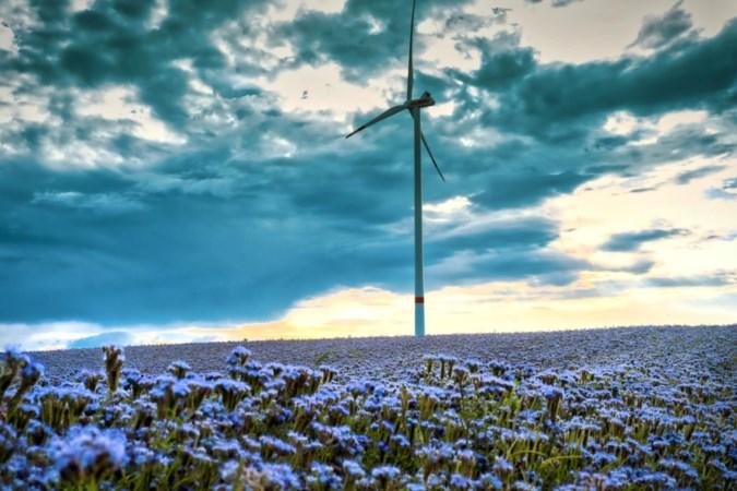 Windmolenpark ten zuidwesten van Maastricht