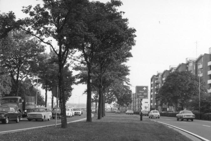 De Groene Loper toen en nu; in 1955 stonden langs 'd'n diek' drie huizen, dat was alles