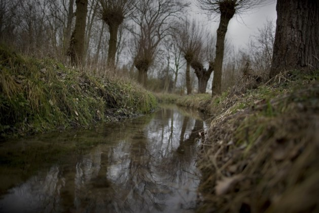 Zorgen om Kingbeek in Obbicht en Grevenbicht