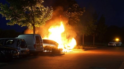 Video: Auto gaat in vlammen op in Weert
