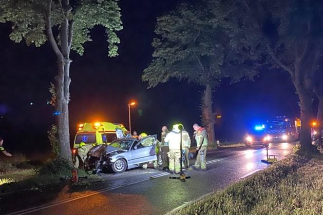 Bestuurder gewond na botsing tegen boom in Horst