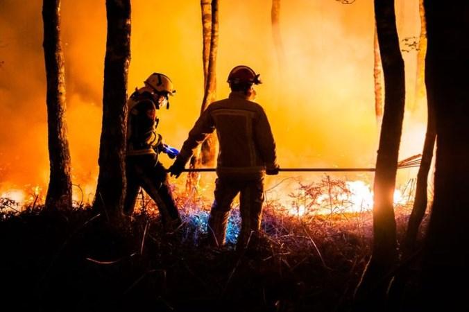 Staatsbosbeheer vermoedt dat grootste natuurbrand van Nederland is aangestoken en doet aangifte