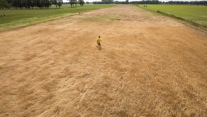 Grote zorgen over impact van droogte