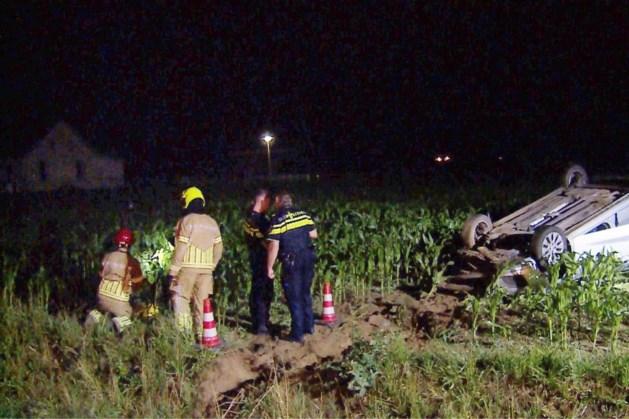 Auto op de kop in maisveld na uitwijken voor ree