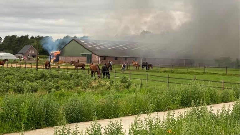 Video: Grote brand in paardenrijstal in Neer