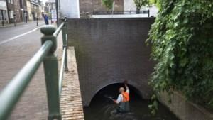 Vissen sterven volgens waterschap bij bosjes door overloop riool in Geleenbeek