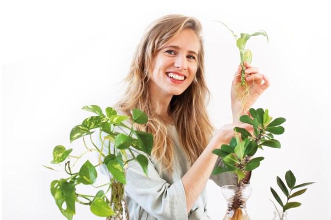 Mama Botanica is je eerste hulp bij plantjes stekken