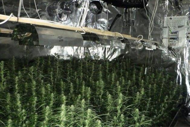 Politie stuit op wietplantage in woning na anonieme tip