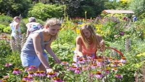 Bewoners willen park rond basisschool in Doenrade inrichten als ontmoetingsplek voor dorpelingen