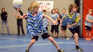 Gemeenteraad dwingt vier ton extra af voor sporthal Kruisweide in Sevenum