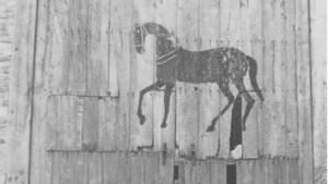 Van nul tot nu: er staat een paard op de poort