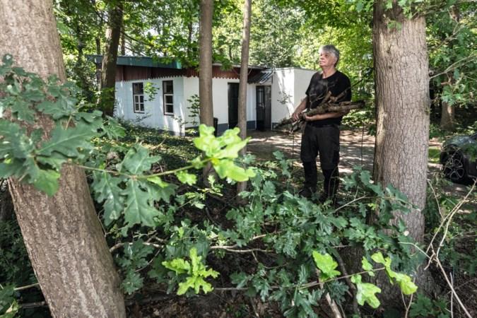 Dit knusse stekje in het Beeselse bos is illegaal gebouwd… door agenten
