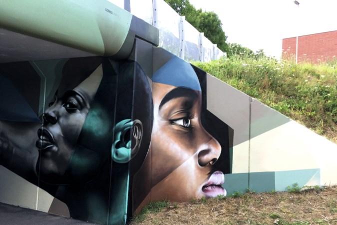 Streetart in Limburg: 'Alsof je een schilderij maakt, alleen is het doek twintig keer zo groot'