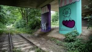 Nieuw kunstwerk van Tanja Ritterbex op viaduct in Bocholtz doelwit van vandalen