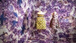 Paillet, parel, pluim en meer pracht en praal in Modemuseum Hasselt