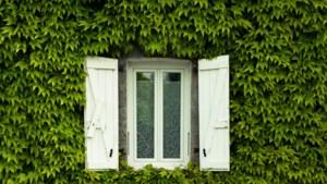 Zo houd je deze zomer de binnenboel zonder airco koel