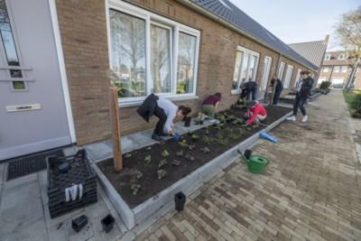 Inwoners van Voerendaal die hun tuin groener maken, krijgen kosten grotendeels vergoed