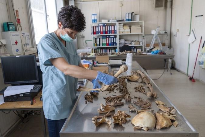 Nog wekelijks een schedel uit het bos rond Srebrenica