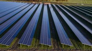 Echt-Susteren zet in op vijf zonneparken