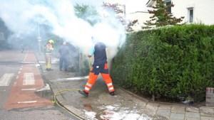Video: Onkruidverbrander zet haag in vuur en vlam