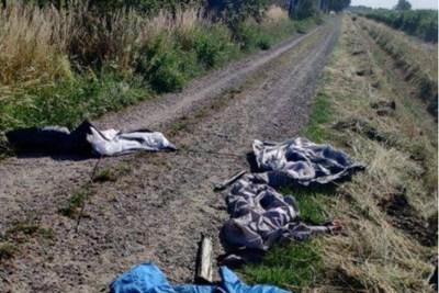 Resten van gestolen spullen Jong Nederland Swalmen teruggevonden in America