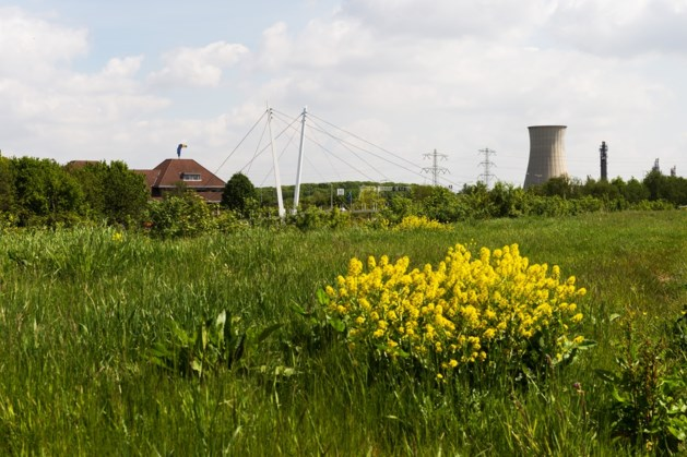 Landbouwers zorgen ook komend jaar voor beheer Heidekamppark