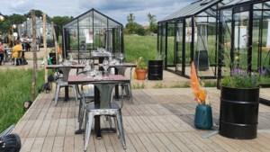 De Veldkas in Sint Geertruid: glazen serres met culinaire surprises