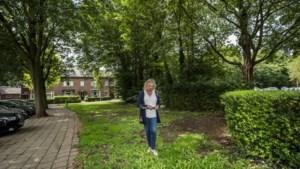 Omwonenden zien geplande pinkiosk in Sint Pieter niet zitten