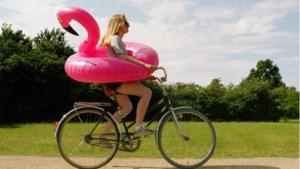 Op wereldreis in Limburg: op de fiets van Californië via Egypte naar Klein Zwitserland
