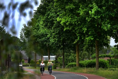 Horst gaat klimaatbestendige bomen planten