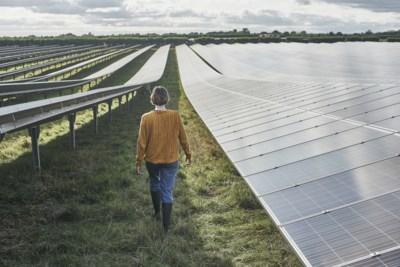 Beringe wordt voor de helft eigenaar van zonnepark De Schorf