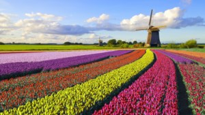 Op pad in ons eigen Nederland: een pretpark met in elke provincie nieuwe verrassingen