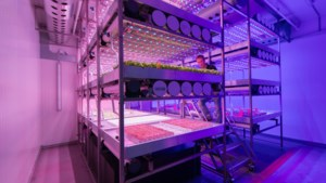 Brightlands Future Farming Institute moet met innovaties positie land- en tuinbouw verstevigen