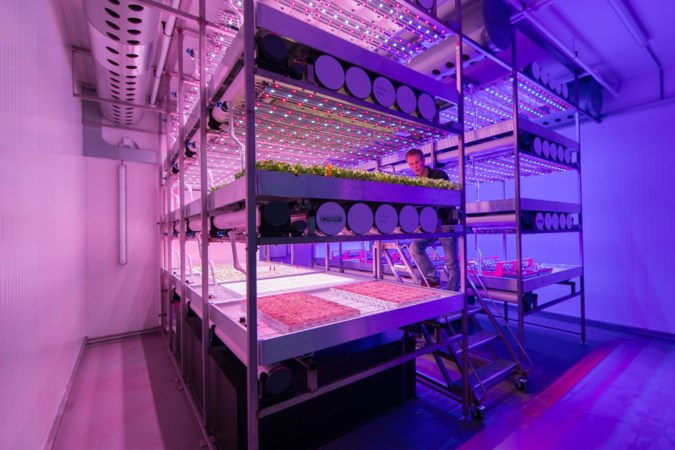 Brightlands Future Farming Institute moet met innovaties positie land- en tuinbouw verstevigen