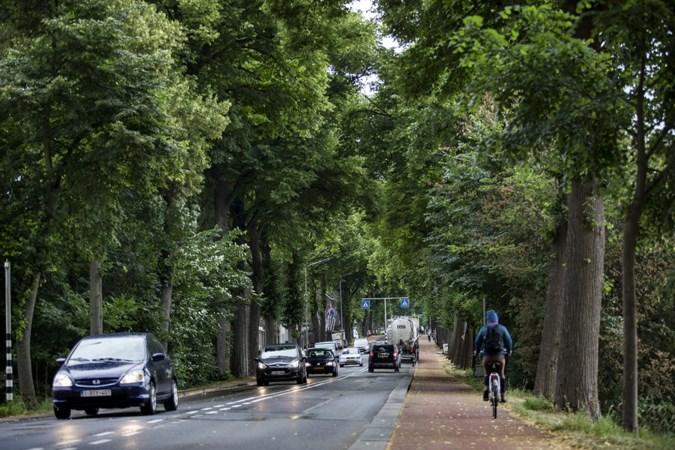 Frustraties bij bewoners drukke Tongerseweg in Maastricht: 'Ik vraag me af hoe serieus we zijn genomen'
