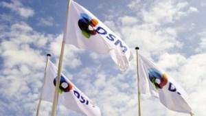 DSM maakt samen met Franse partner plantaardige eiwitten voor vlees- en zuivelvervangers