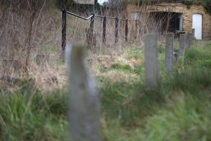 VVV gaat voor koop historische grond van oude stadion De Kraal