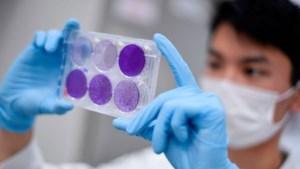 Door Nederland besteld coronavaccin mogelijk dit jaar op de markt na succesvolle proef op mensen