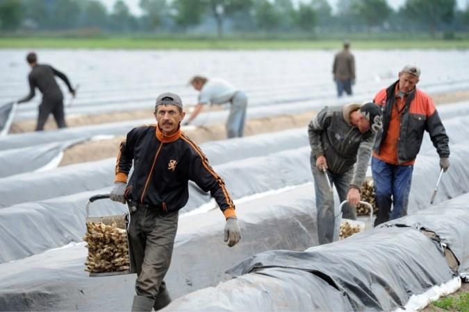 Duitse grensdorpen zitten in hun maag met 'Nederlandse' arbeidsmigranten uit Oost-Europa