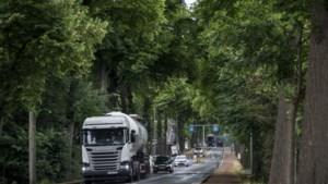 Leden van de werkgroep Tongerseweg eisen rectificatie van gemeente Maastricht: 'We voelen ons gebruikt'